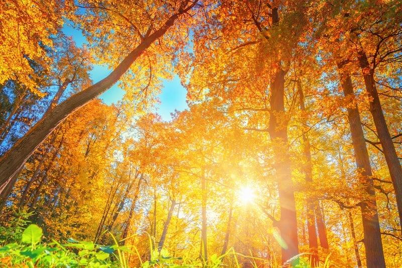 Où faire de la randonnée en octobre ?